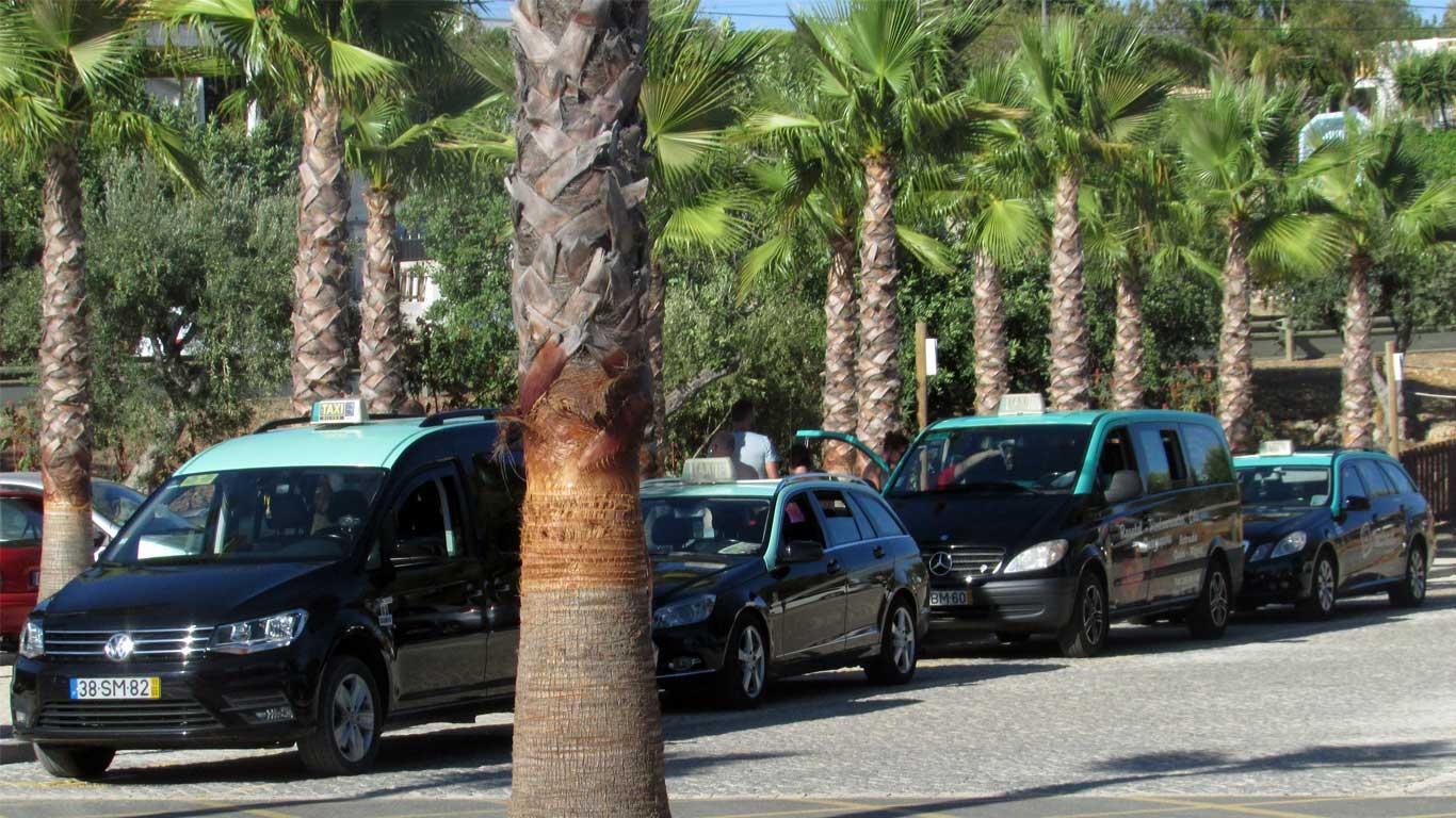 Quatro veículos táxi em fila a aguardar à porta do zoomarine, no Algarve.