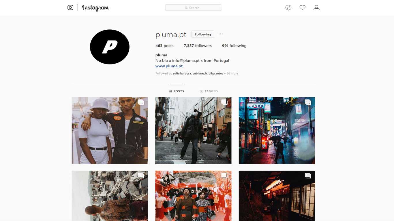 Portfólio online de Pluma