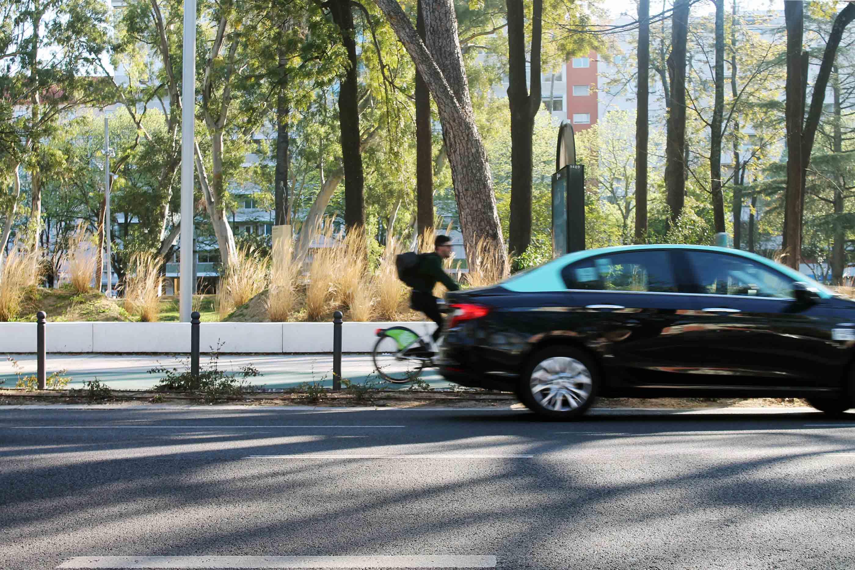 Homem pedala uma bicicleta da Gira em uma ciclóvia no Jardim do Campo Grande em Lisboa num dia de sol.