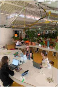 Grupo de 4 mulheres e um homem a trabalhar em computadores em duas mesas separadas numa estufa com plantas verdes em pequenos vazos de barro