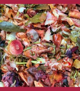 Cascas de legumes e restos de comida, todos envolvidos criando um arco-íris de diferentes cores da natureza.
